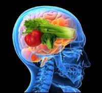 Brain Health With Ginkgo Biloba